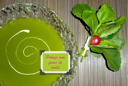 Potage aux fanes de radis - C'Végétal
